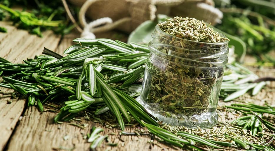 Rosemary: a complementary and alternative therapy in cancer prevention
