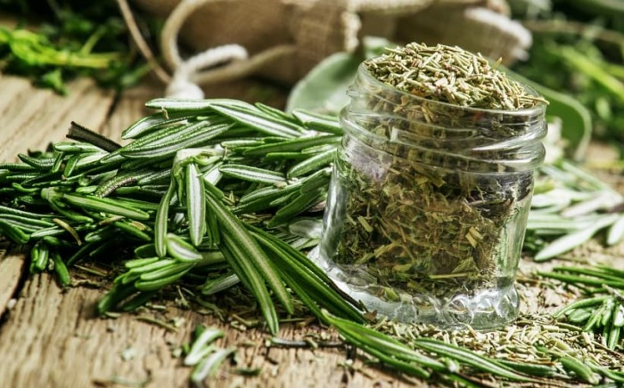 Rosemary-for-cancer-prevention-admac