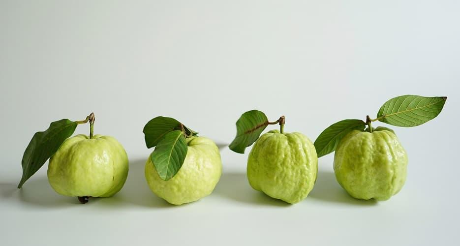 Guava: A potent anticancer fruit