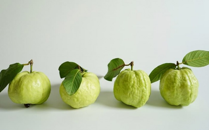Guava-anticancer-fruit-admac
