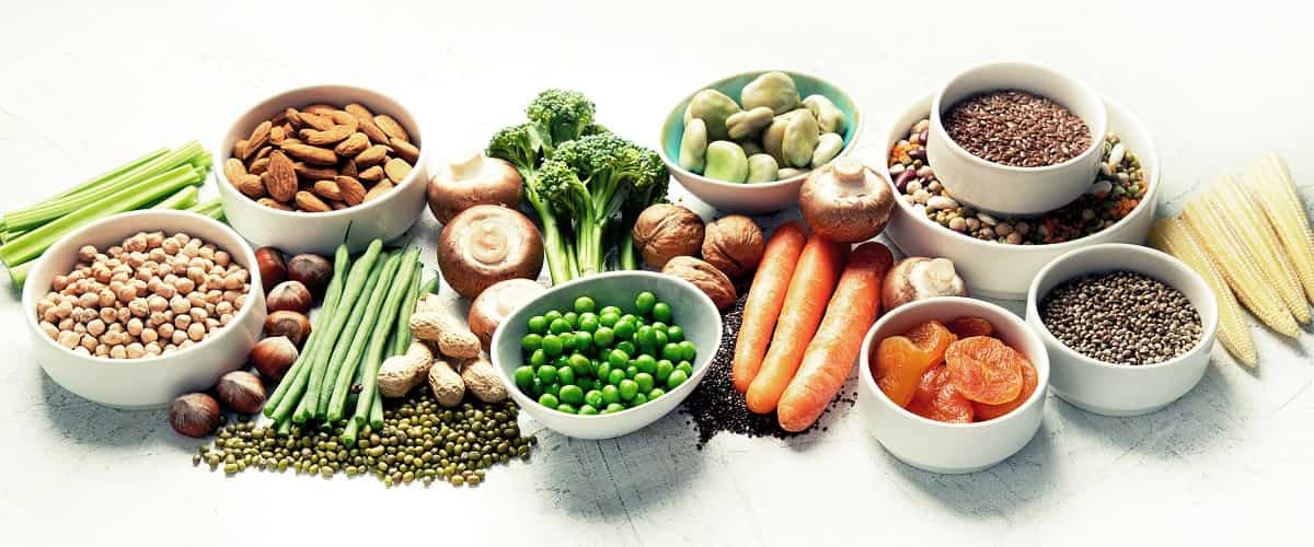 Association between plant-based diet and cancer prevention